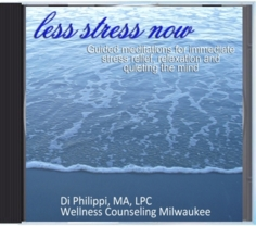 Less Stress Now downloadable CD by Di Philippi, Holistic Anxiety Therapist